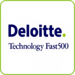 2013 & 2014 Technology Fast 500